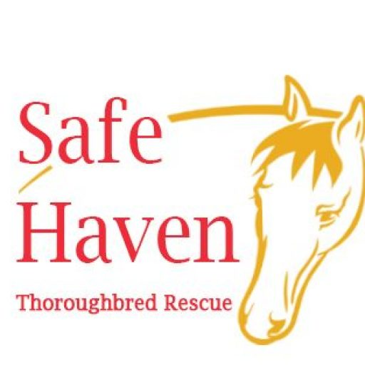 Large Safe Haven Logo of horse face