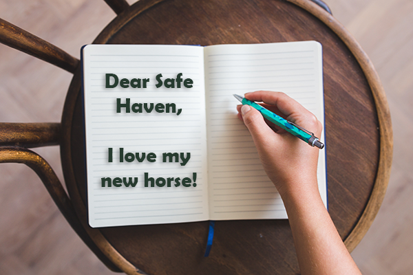 A small diary sitting on a wooden stool opened up with the words Dear Safe Haven, I love my horse.